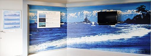 尾崎かまぼこ館 海の神秘紹介コーナー写真