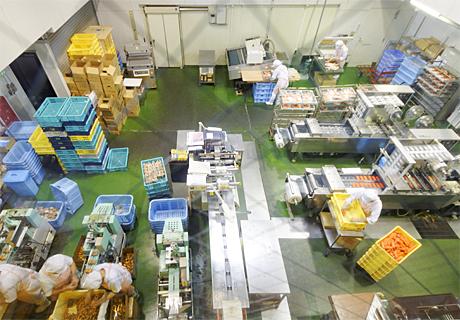 尾崎かまぼこ館 工場見学写真